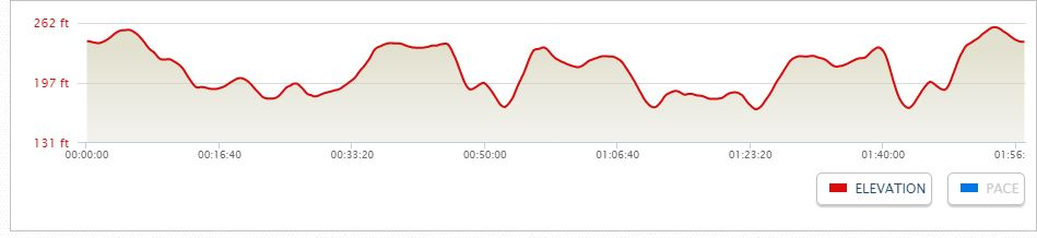 13 mile training run elevation profile