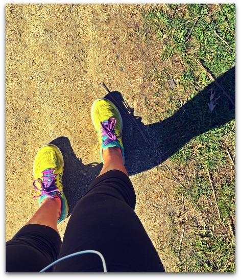 Training Run